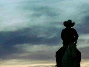 All-Trans Cast Live Reading of 'Brokeback Mountain' Streaming Sunday